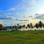 Guam08